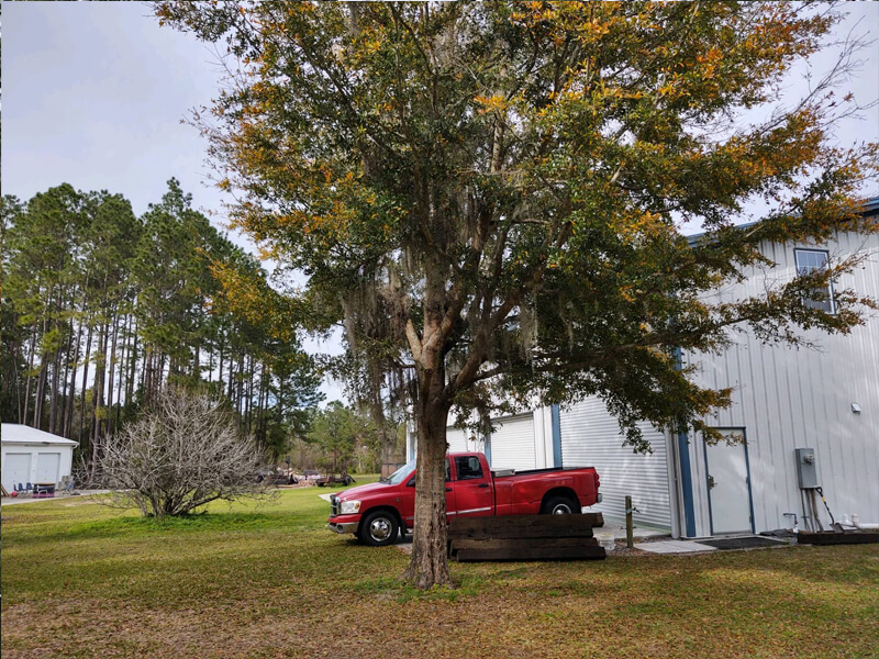 A picture of the back of the school at North Florida Arts and Sciences Academy
